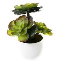 Planta Artificial Latcor BX-47562/Y25-01 Plástico Branco e Verde