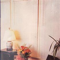 Persiana Becky Vinil 100x160 cm 25 mm Plástico Marfim
