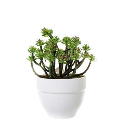 Planta Artificial de Plástico para Ornamentação Latcor BX-43675/Y15-01